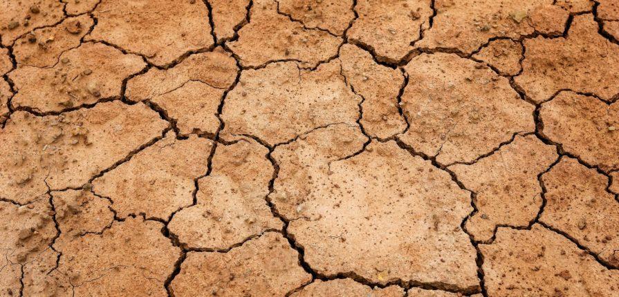 desert, dry, ground
